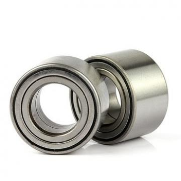 NF29/500 Toyana cylindrical roller bearings